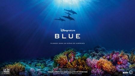 Ciné-mercredi: Blue