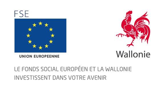 logo FSE wallonie